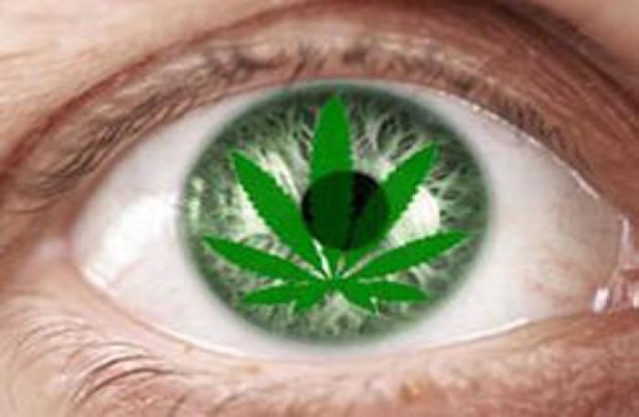 Курение марихуаны это грех закупка конопли